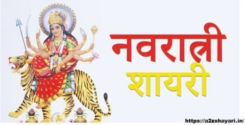 Maa Durga Shayari In Hindi